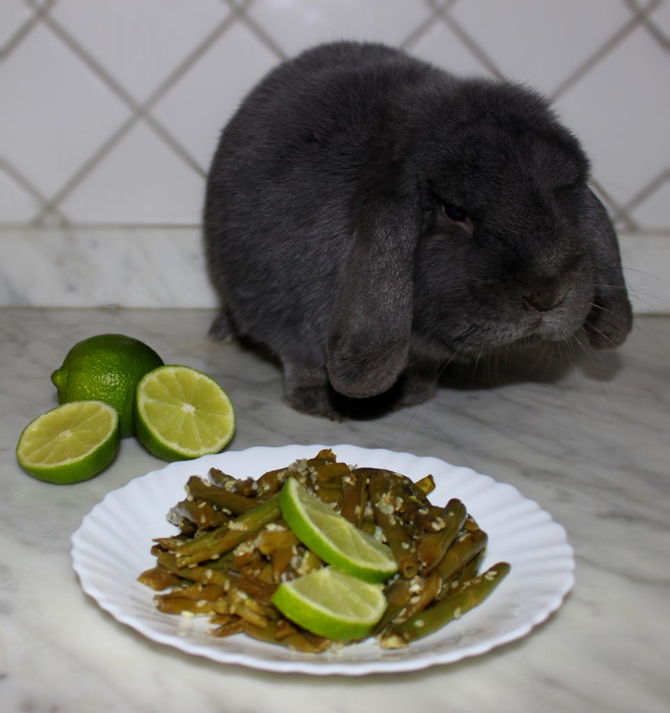 A plate of quick and easy exotic green beans with lime slices on top and a cute grey bunny in the background