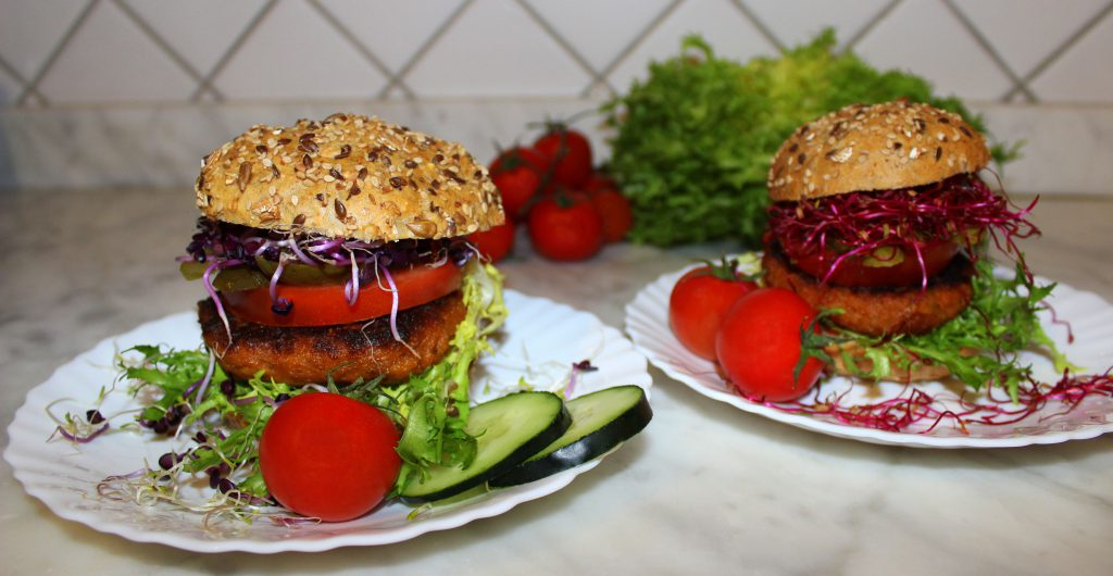 Two Eggplant and sundried tomato vegan burgers with vegetables and sprouts
